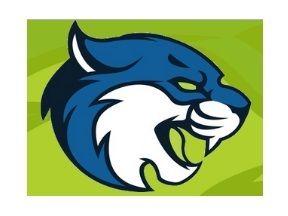 B & S Bobcats